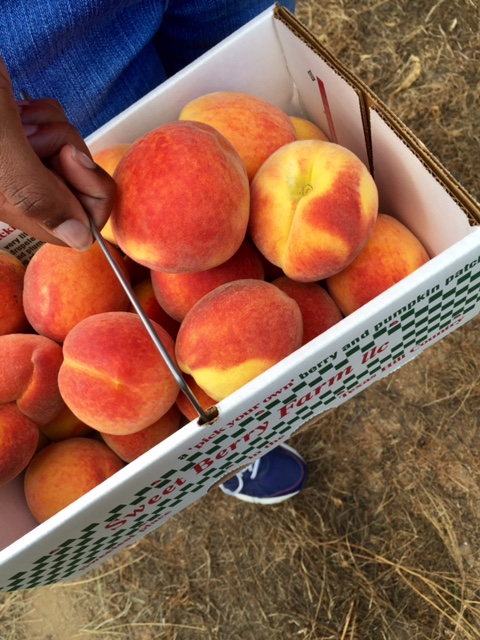 Holding a big box full of peaches in the right hand